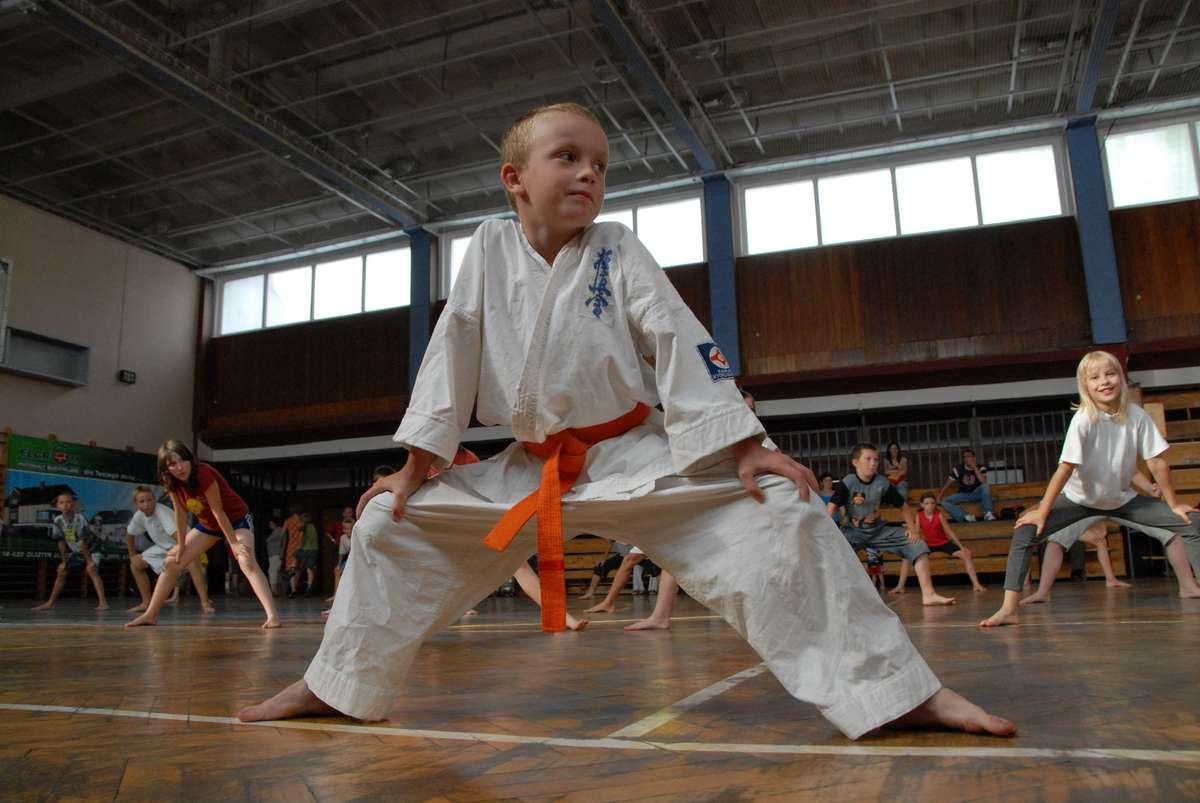 Letnia Akademia Karate - full image