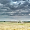 Zdjęcie Tygodnia. Krajobraz w Lipicy podczas żniw