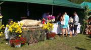 VII Festiwal Kultury Mazurskiej - relacja i zdjęcia