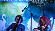 Koncert Trio Targanescu