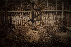 Tajemnica grobu generała Samsonowa