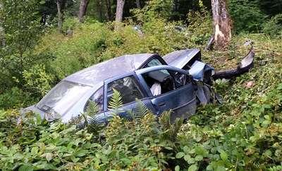 Opel uderzył w drzewo. Dwie osoby zostały ranne