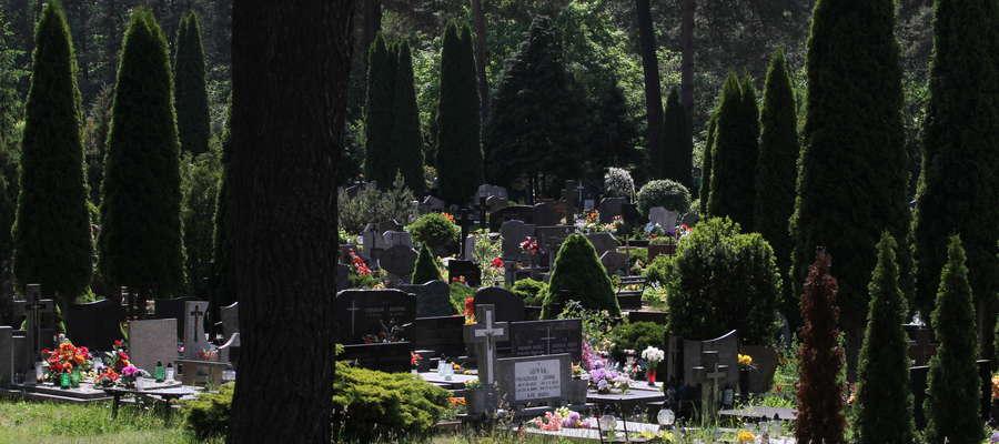 Krematorium na cmentarzu w Dywitach na razie nie powstanie. Co dalej z wielkim projektem?