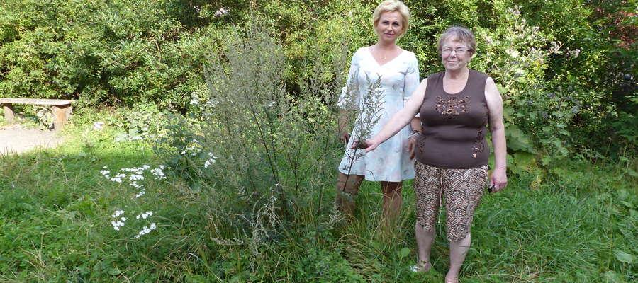 Ewa Bagińska i Gerda Maślanik mieszkają w sąsiedztwie tego paskudnego podwórka. Obie wspominają czasy, kiedy wyglądało ono zupełnie inaczej