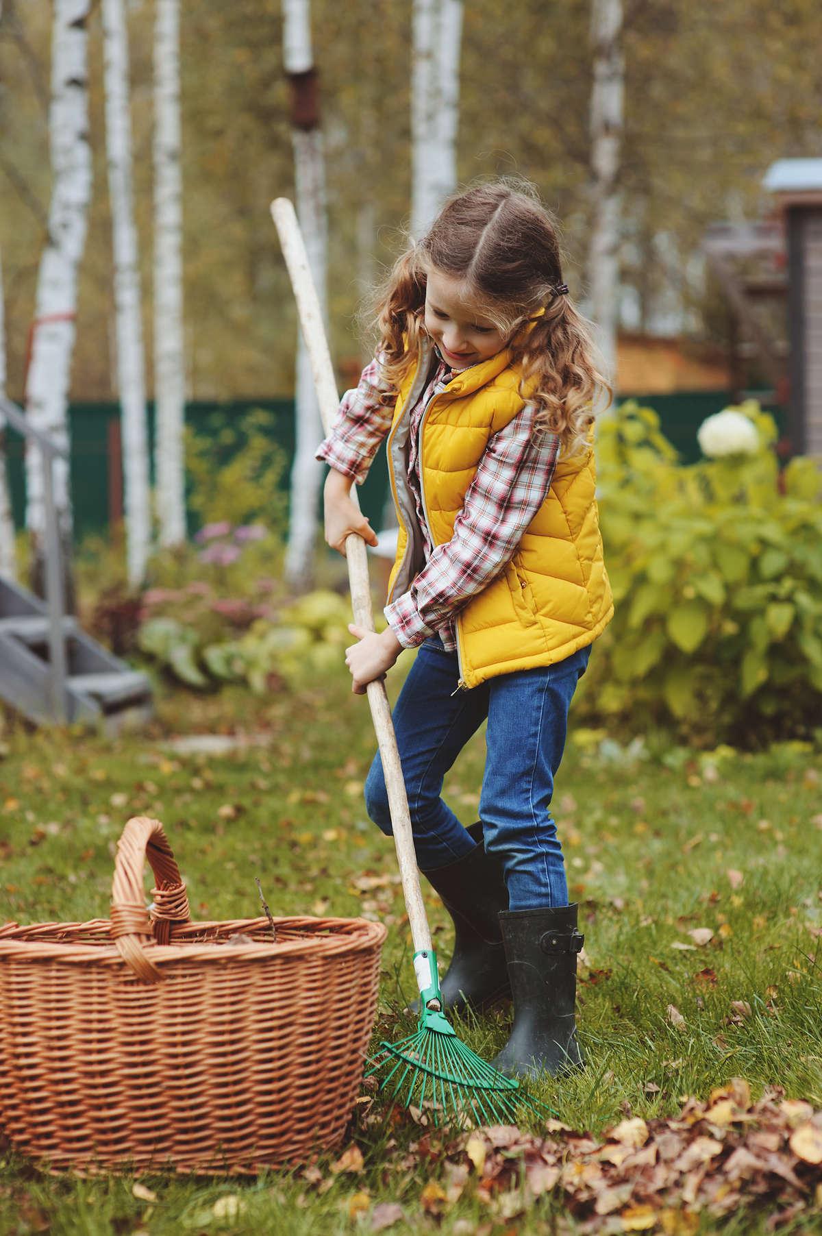 Październikowe prace ogrodowe - full image