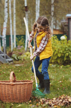 Październikowe prace ogrodowe