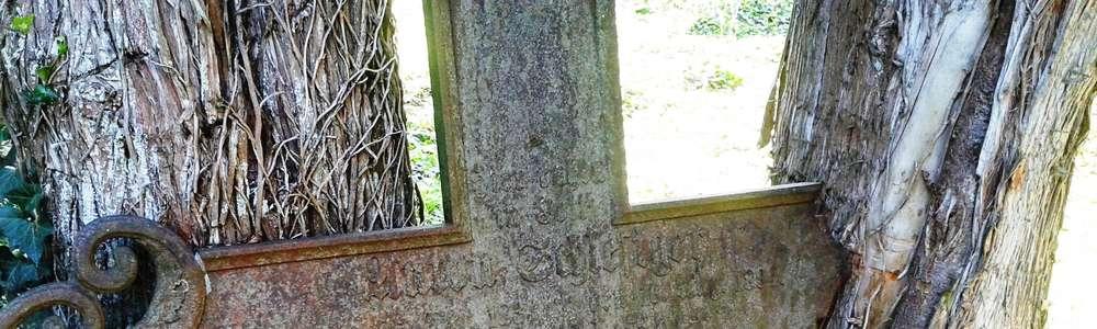 Malownicze ruiny w Osetniku