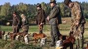 Niezwykłe rasy psów myśliwskich ponownie w Orzechowie