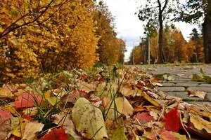 Dziś ostatni dzień lata, jutro pierwszy dzień jesieni