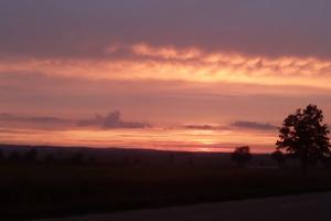 Zdjęcie Tygodnia. Wieczorny krajobraz z wiatrakami
