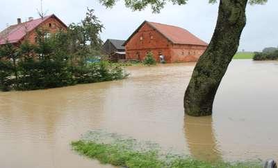 Woda zalała wiele domów i gospodarstw. Blisko 100 interwencji strażaków