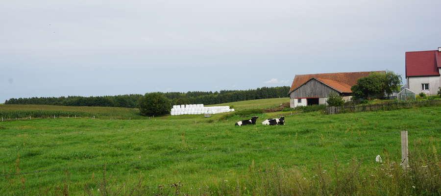 """Od 28 września do 27 października rolnicy będą mogli ubiegać się o kasę w ramach poddziałania """"Wsparcie inwestycji w gospodarstwach rolnych"""" typ operacji """"Inwestycje w gospodarstwach położonych na obszarach Natura 2000"""""""