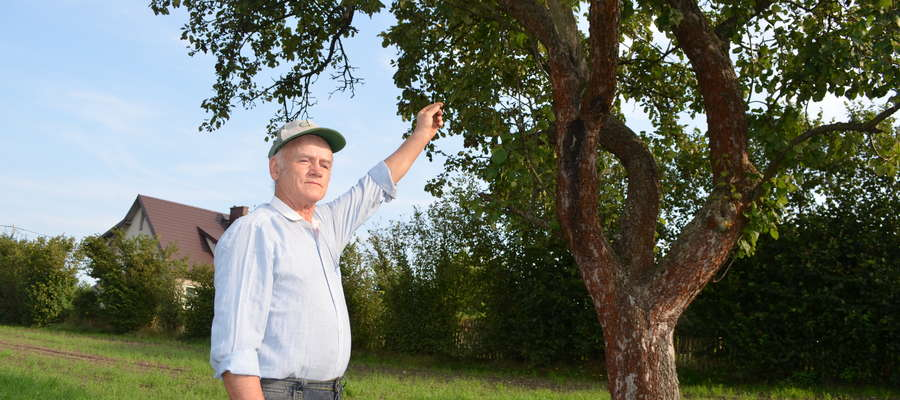 Zmarzły mi wszystkie owoce. Pomimo wszelkich zabiegów, nic nie udało się uratować — mówi pan Marian z Mławy