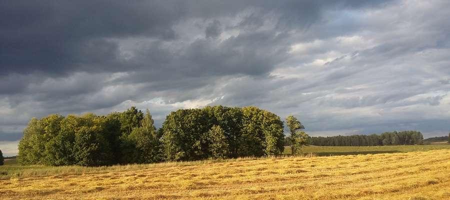 Niestety przez ostatnie dni rolnicy mimo szczerych chęci nie mogli wjechać na pola. Wszystko ze względu na kiepską pogodę
