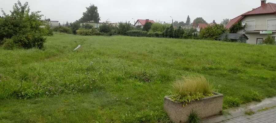 Tu w przyszłości miałby powstań park — miejsce integracji mieszkańców Dajtek