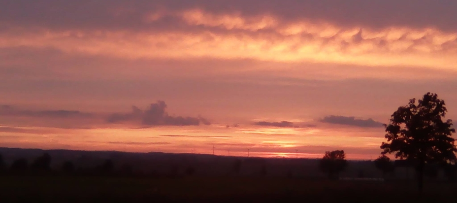 Zdjęcie zostało wykonane podczas zachodu słońca nieopodal miejscowości Garbno. Na zdjęciu widzimy wiatraki prądotwórcze w tle, które świetnie podkreślają jakże piękny widok chmur. Wraz z drzewem tworzy się przepiękny krajobraz, który jest nie do opisania
