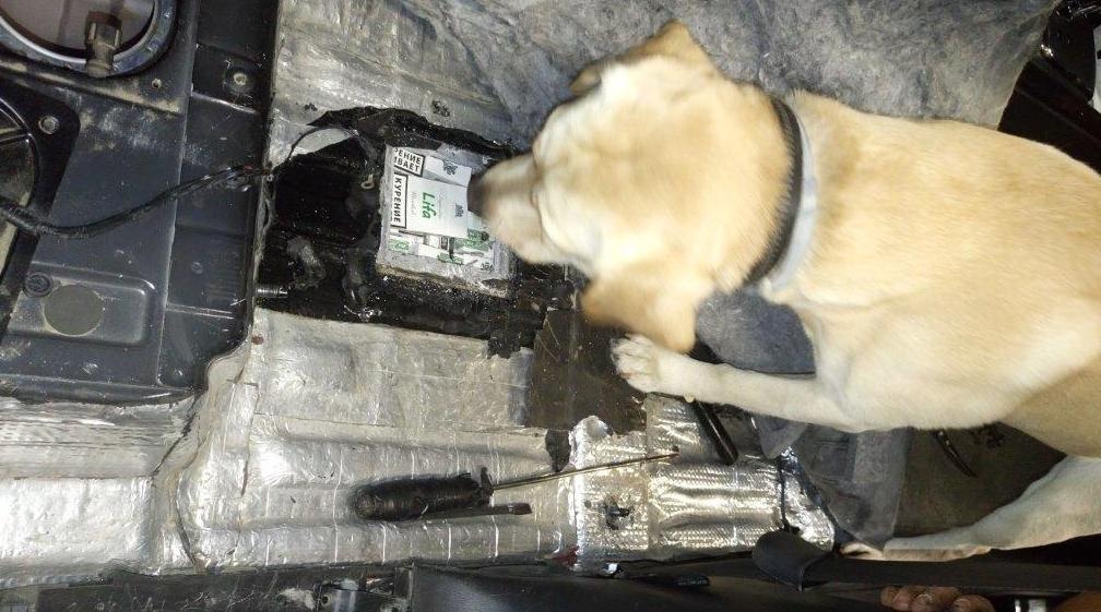Поляк вез в баке нелегальные сигареты. Сотрудники таможни обнаружили их благодаря собакам
