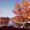 Zdjęcie Tygodnia. Jesień nad Łyną w Bartoszycach