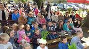 Święto Pieczonego Ziemniaka w Łąkorzu
