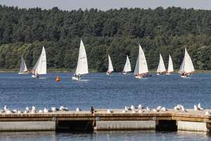Miasto sprzedaje działki nad jeziorem Krzywym