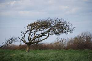 Uwaga na porywisty wiatr. Może wiać nawet 90km/h!
