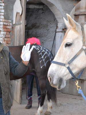 Jeździectwo dziecięce to ich konik