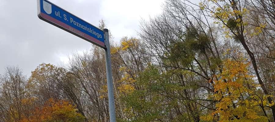 Ulica, której patronem jest prof. Poznański, znajduje się w rejonie ulic Minakowskiego i Olszewskiego na Brzezinach