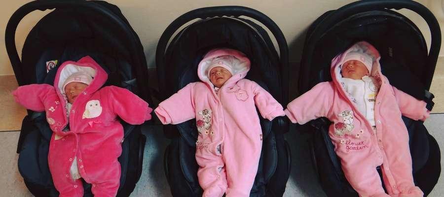 Basia, Ania i Hania przyszły na świat w Wojewódzkim Szpitalu Zespolonym w Elblągu