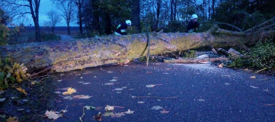 Porywisty wiatr przewrócił drzewo na trasie Reszel - Kocibórz