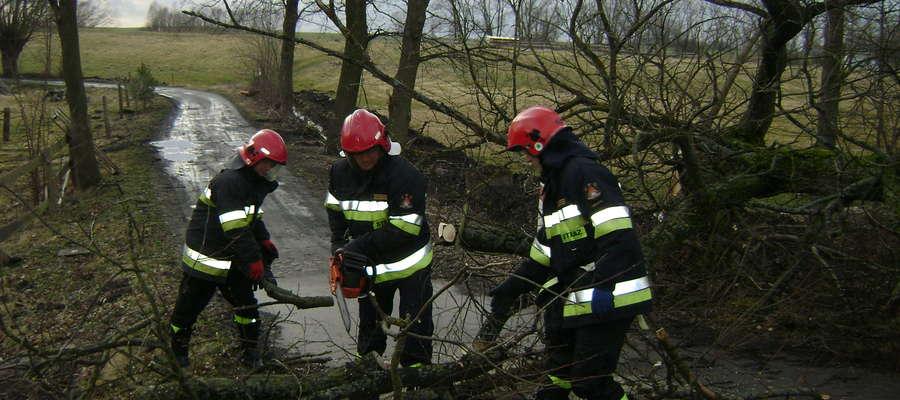 Strażacy walczą nie tylko z nadmiarem wody, ale też z poprzewracanymi przez wichurę drzewami.