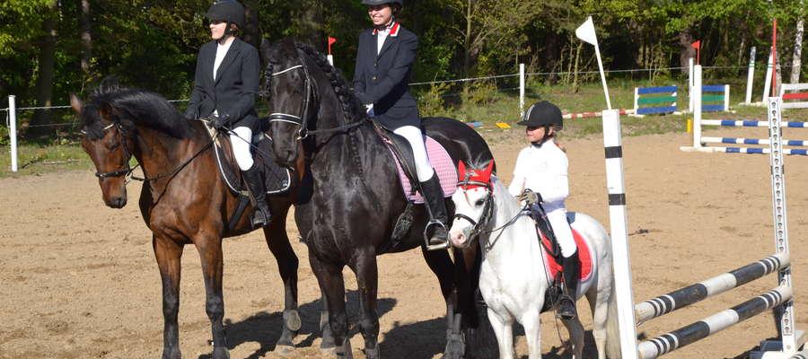Polish Pony Club