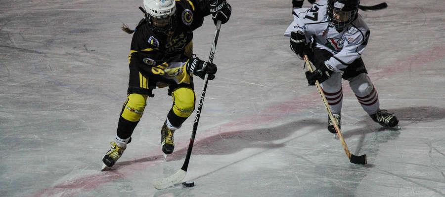Liga hokeja