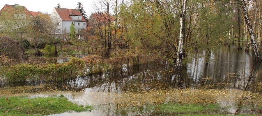 Zalany park przy ul. Gdańskiej w Giżycku