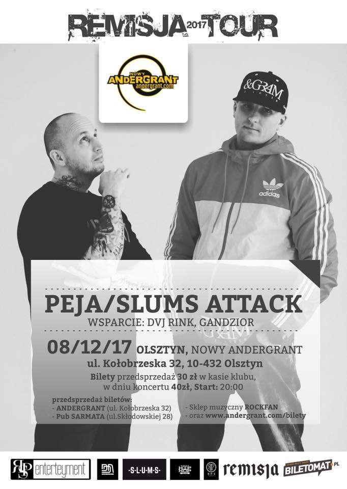 Peja i Slums Attack na scenie w Adergrancie - full image