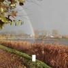 Zdjęcie Tygodnia. Tęcza nad jeziorkiem w Bartoszycach