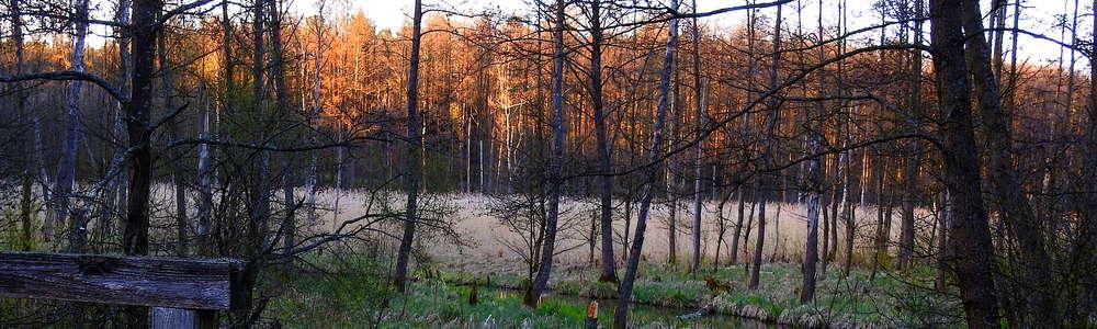 Skarlanką przez Pojezierze Brodnickie do Drwęcy
