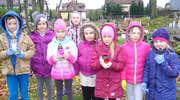 Uczniowie robili porządki na cmentarzu