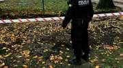 Wracamy do tematu: Saperzy sprawdzają, czy w Kisielicach nie ma więcej niewybuchów