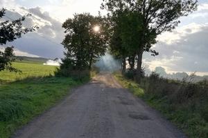 Zdjęcie Tygodnia. Rozświetlona droga w Osiece