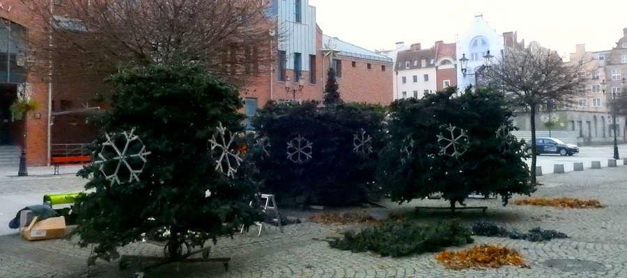 W środę (29.11) ustawiana jest choinka na Starym Rynku