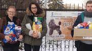 Pomocnicy Mikołaja w schronisku dla zwierząt