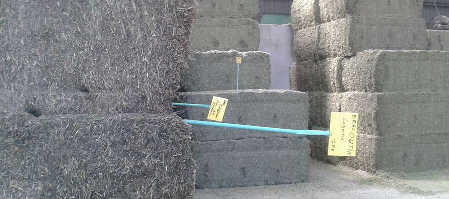 Baloty wysokiego zgniotu z suszu lucerny, każdy o wadze 500-600 kg
