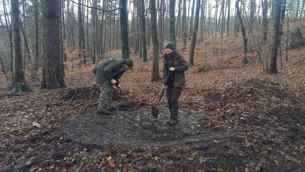 Leśnicy odsłonili tajemniczy obiekt w Leśnictwie Sarnia Góra. To sarniogórskie Stonehenge - full image