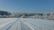Zdjęcie Tygodnia. Zimowy krajobraz koło Wozławek