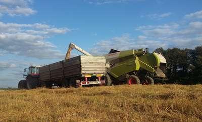 Najpopularniejsze wśród rolników obszary wsparcia PROW w I kwartale 2018 roku