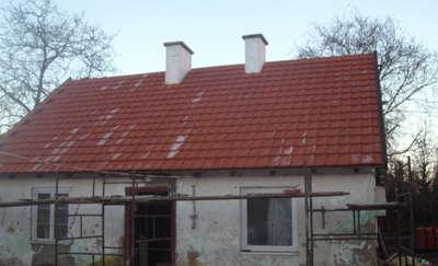Dali im nadzieję na nowy dom