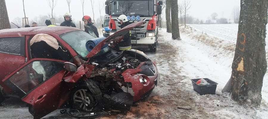 Przyczyną wypadku było niedostosowanie prędkości do warunków panujących na drodze.