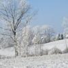 Zdjęcie Tygodnia. Zimowy krajobraz koło Kandyt