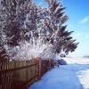 Zdjęcie Tygodnia. Zima w Łędławkach