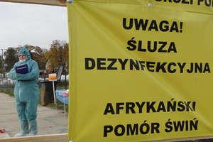 Obostrzenia związane z zabezpieczeniem przed Afrykańskim Pomorem Świń (ASF) od początku marca